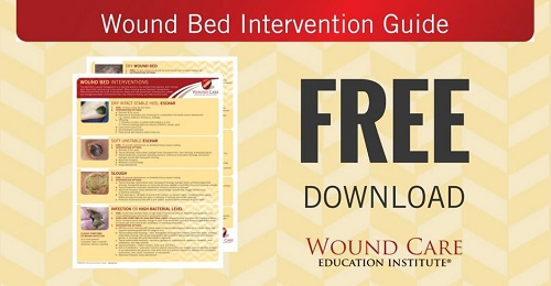 Wound Bed Intervention Guide